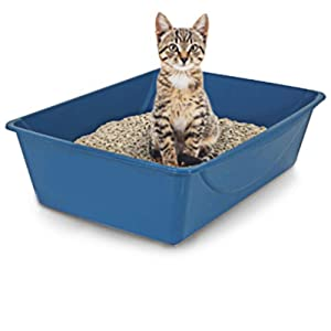 Petmate Open Cat Litter Box, Blue Mesa/Mouse Grey, 4 Sizes