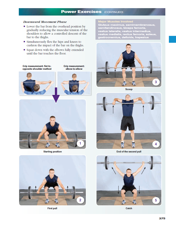 Essentials of strength training and conditioning 4th edition with view larger fandeluxe Image collections