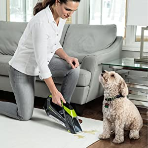carpet cleaner; cordless cleaner; pet stain remover; stain remover; upholsetery cleaner; car cleaner