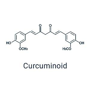 Curcuminoid