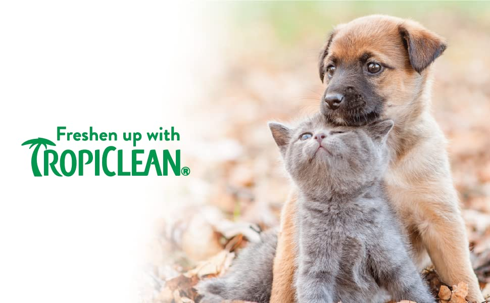 smelly puppy, freshen up with tropiclean