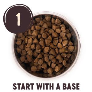 Grain Free dry dog food, wellness core reduced fat formula dry dog food, reduced fat pancreatitis