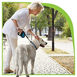 Older woman is pausing a walk to pet her larger, older dog