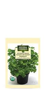 ... Organic Giant of Italy Parsley Seeds