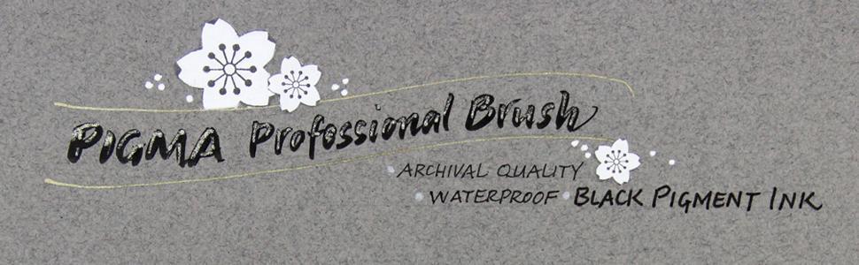 Pigma Professional Brush By Janet Takahashi