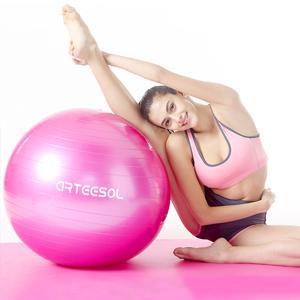 Amazon.com: arteesol Exercise Yoga Ball, Extra Thick ...