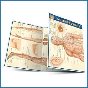 Quick Study QuickStudy Acupressure Laminated Study Guide BarCharts Publishing Acupressure Reference