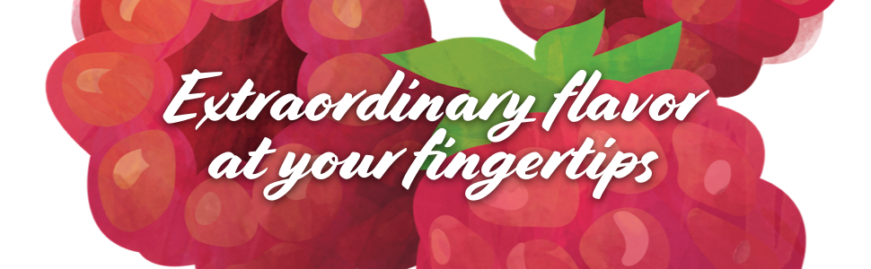 torani syrups extraordinary flavor at your fingertips in white font on red raspberry drawing
