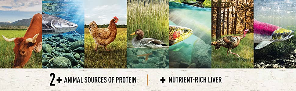 Two Plus Sources of Protein, Nutrient Rich Liver Cat Food, Holistic, Wholesome,