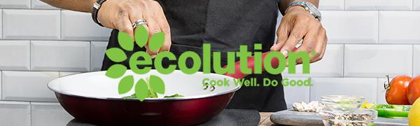 ecolution brand
