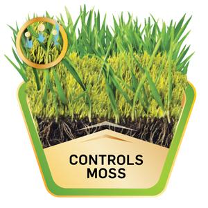 Controls Moss