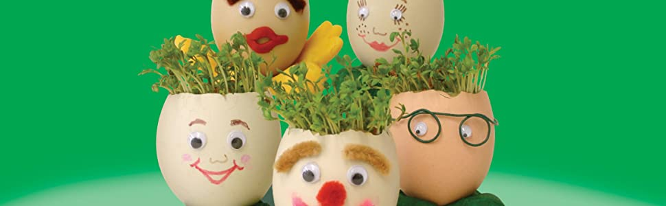 Mr. Fothergill's Cress Heads Fun Seeds: Amazon.co.uk: Garden ...