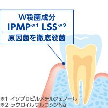 IPMP(イソプロピルメチルフェノール) LSS(ラウロイルサルコシンNa)
