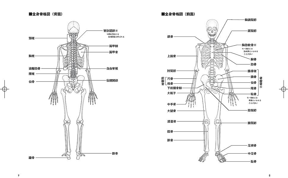 高岡英夫 疲労回復 ゆる体操 肩甲骨 股関節 運動科学 呼吸法 体幹 古武術 甲野善紀 秘伝 武術 整体 接骨 骨法 全集中の呼吸