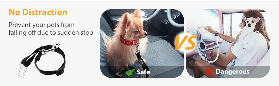 cinturon coche para perros