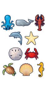 Nautical Sea Life Accents