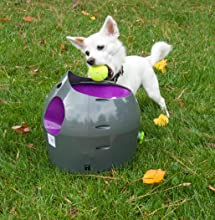 iFetch Too Interactive Ball Launcher for Dogs, Nerf Dog Tennis Ball Blaster, Lillian Ruff