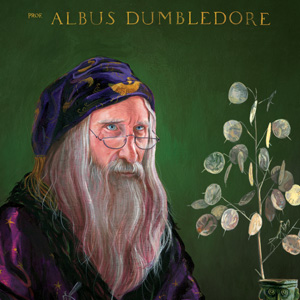 Harry Potter, Sorcerer's Stone, Albus Dumbledore