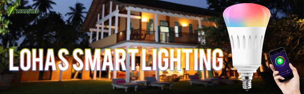 e12 smart light bulb
