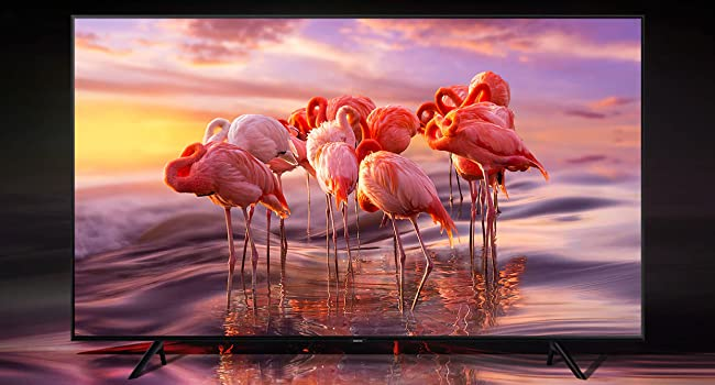 QLED TV with colorful flamingo scene