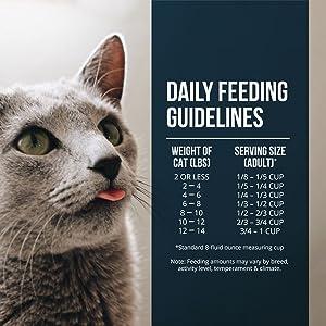 feeding guidelines