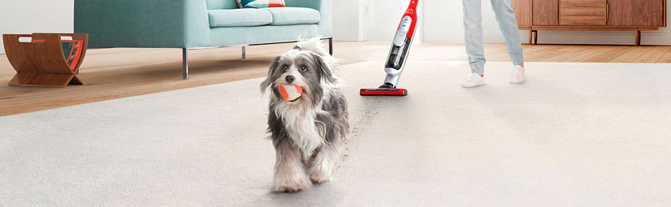 The vacuum designed for pet lovers