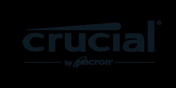 crucial micron