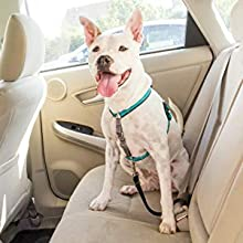 dog harness no pull leash collar chest seatbelt car safety
