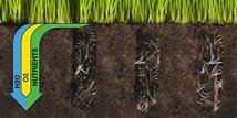 soil compaction plug aerator