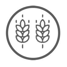 Weider Protein Pancake Mix Vainilla. Tortitas de harina de avena integral, enriquecidas con proteinas. Sabor Banana - 600 gr