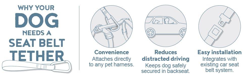 kurgo seat belt tether, direct to seatbelt tether, dg belt buckle, per seatbelt, for small medium