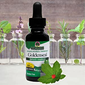 Nature's Answer, Goldenseal, Alcohol Free, concentrated, gluten free, vegan, nonGMO