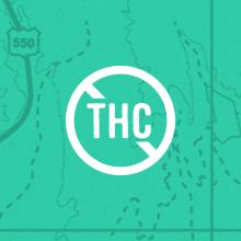 No Measurable THC