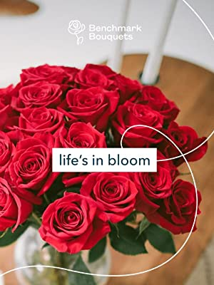 Amazoncom Benchmark Bouquets Signature Roses And Alstroemeria