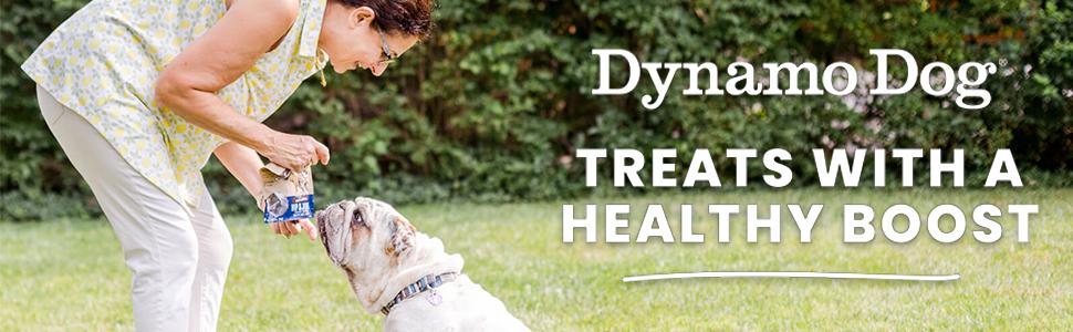 Cloud Star Dynamo Dog Digestive Support Soft Chew Treats Grain Free Pumpkin Ginger Probiotics