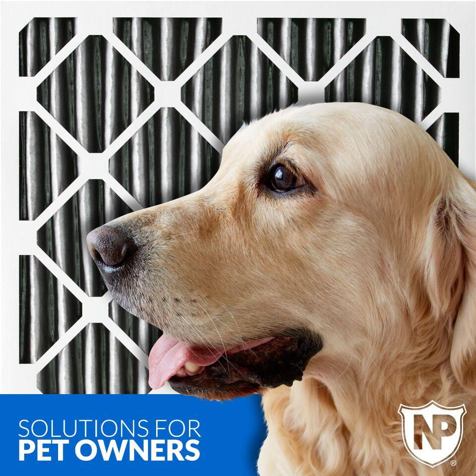 Best air filter for allergies and pet dander -  Air Filter Pets Pet Dander Animals Allergies Asthma View Larger