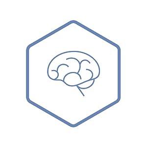 Brain amp; Nervous System