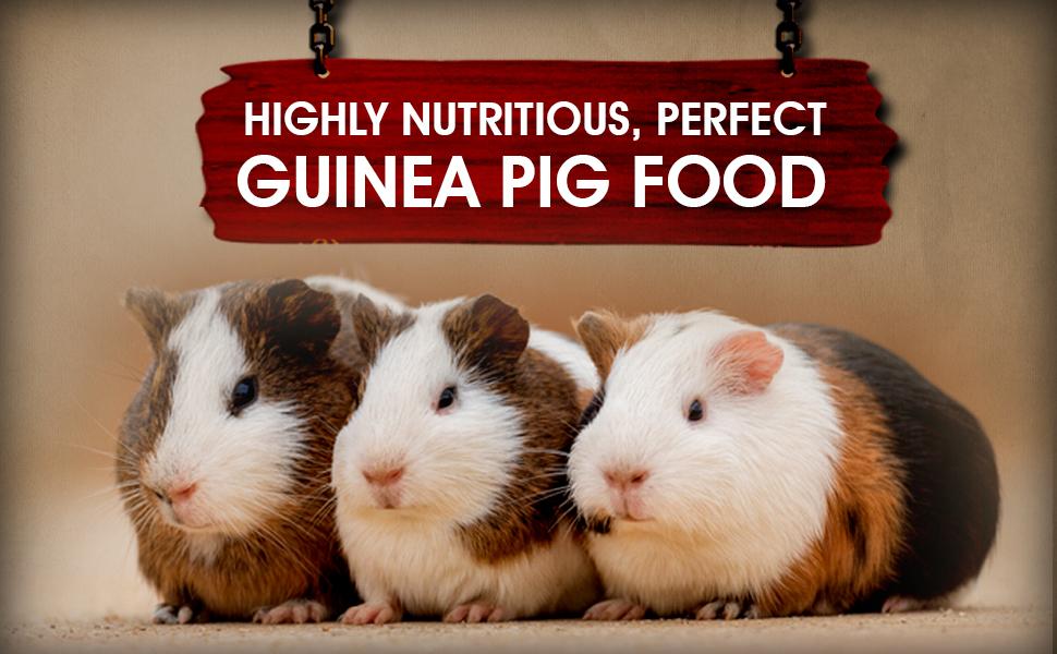 Boltz guinea pig food