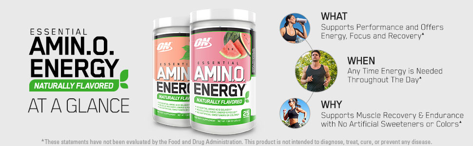 Amino Energy Naturally Flavored Optimum Nutrition Protein Powder