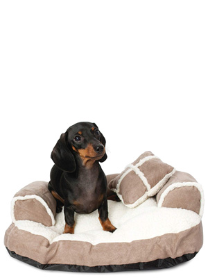 aspen pet bed, small sofa, puppy bed, puppy beds for small dogs, beds for dogs,