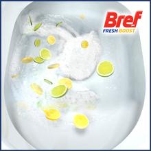 fresh toilet