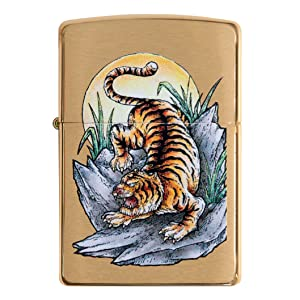 tiger, safari animal, animals, tigers, color image,