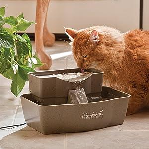 thirsty cat, pet water fountain, multi-tier pet fountain, multi-pet fountain