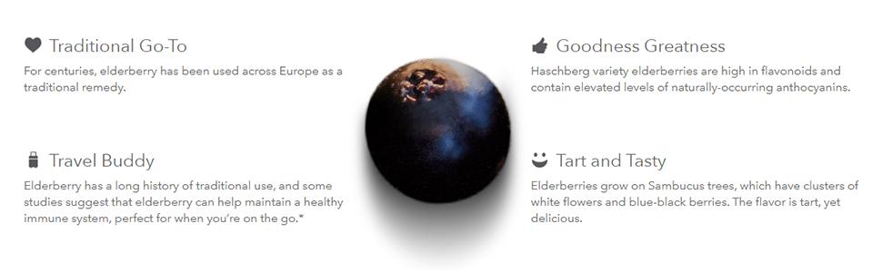 elderberry difference