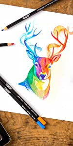 Amazon.com: Crayola Blend & Shade Colored Pencils in Decorative Tin ...