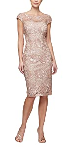 Shift Midi Lace Embroidered Dress