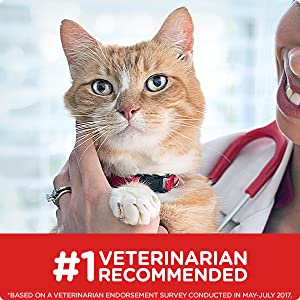 #1 Veterinarian Recommended Veterinarians know what's best for your pet's health.