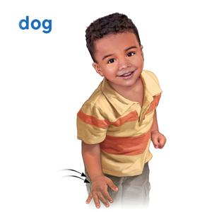 baby sign language,baby sign language,baby sign language,baby sign language,baby sign language