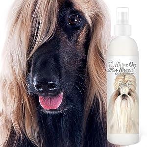 dog shiny coat