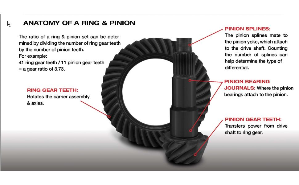 Anatomy of a Ring amp; Pinion